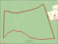 mapa biegu