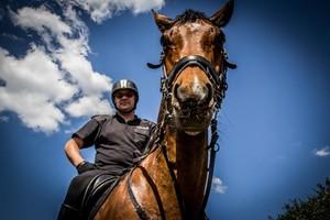 policjant siedzący na koniu